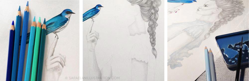 Aggiungere colore ai disegni uccellino azzurro