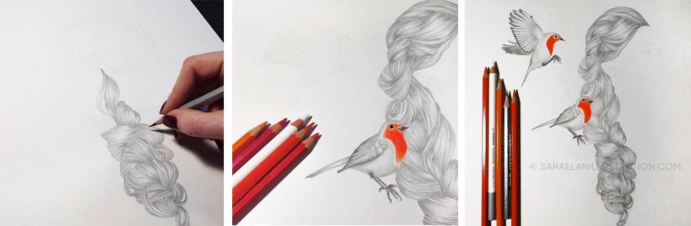 aggiungere colore ai disegni ragazza con pettirosso