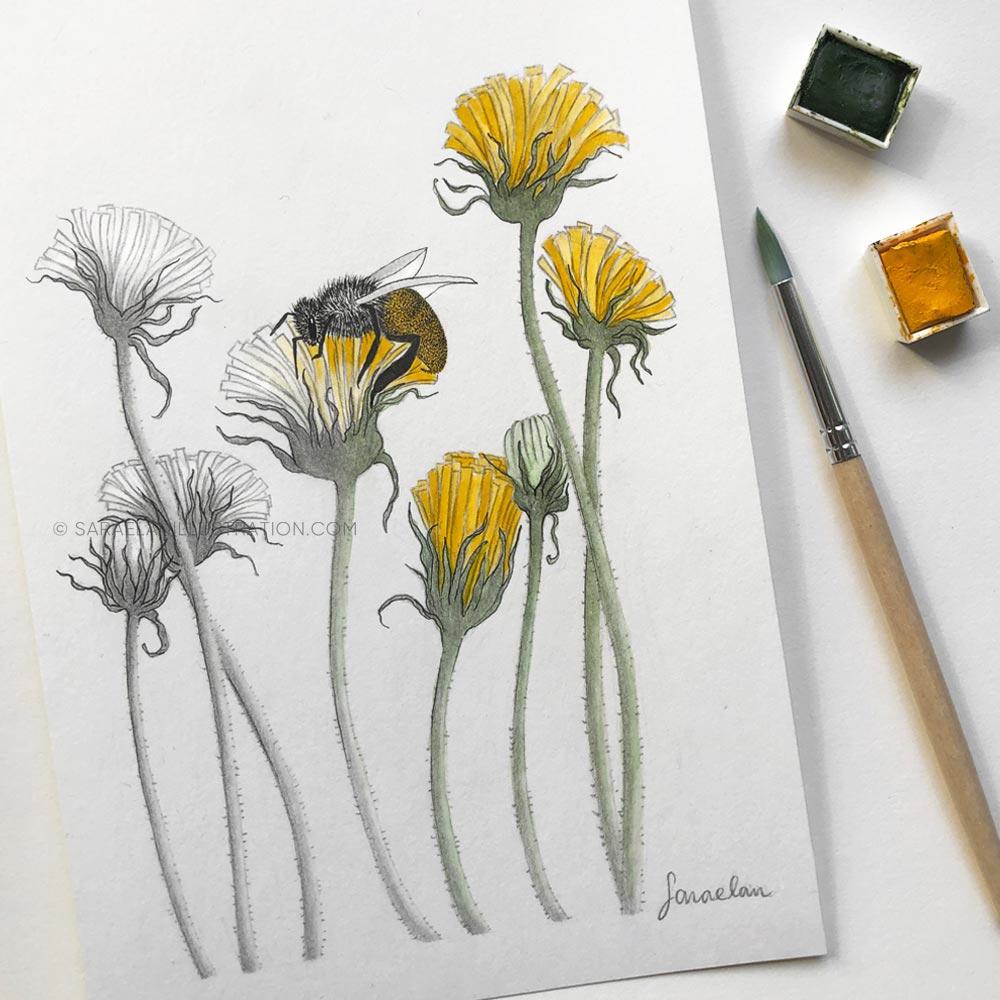 Disegno di un'ape che colora i fiori su cui passa