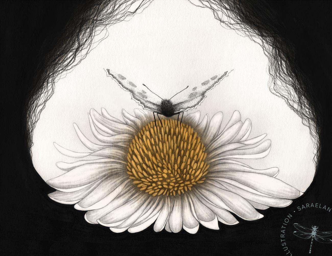 Equilibrium di Sara Elan Donati - disegni di farfalle in equilibrio in inchiostro e dotwork