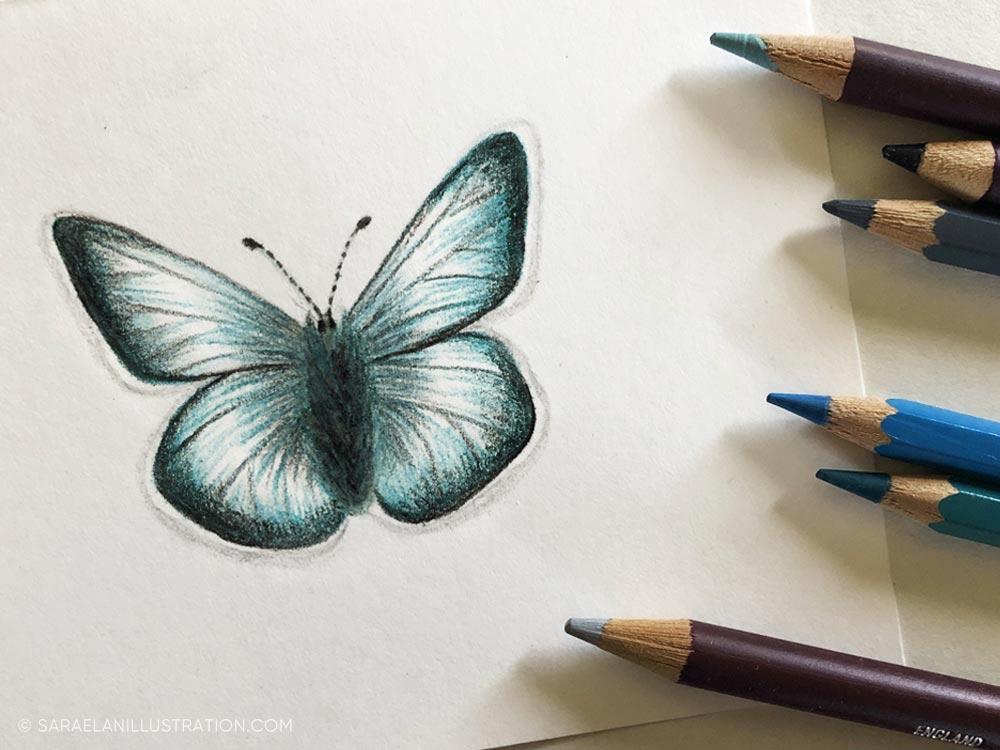 Disegnare farfalle-farfalla disegnata con matite colorate