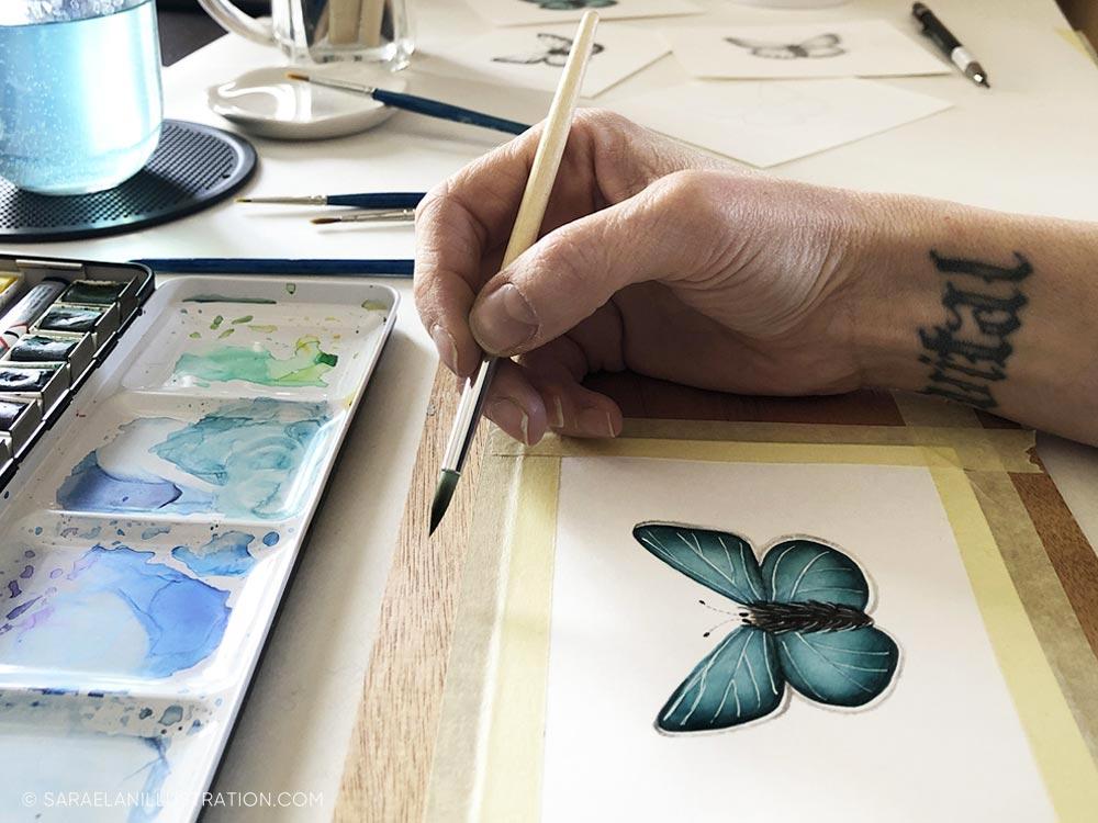 Disegnare farfalle-farfalla disegnata con acquerello
