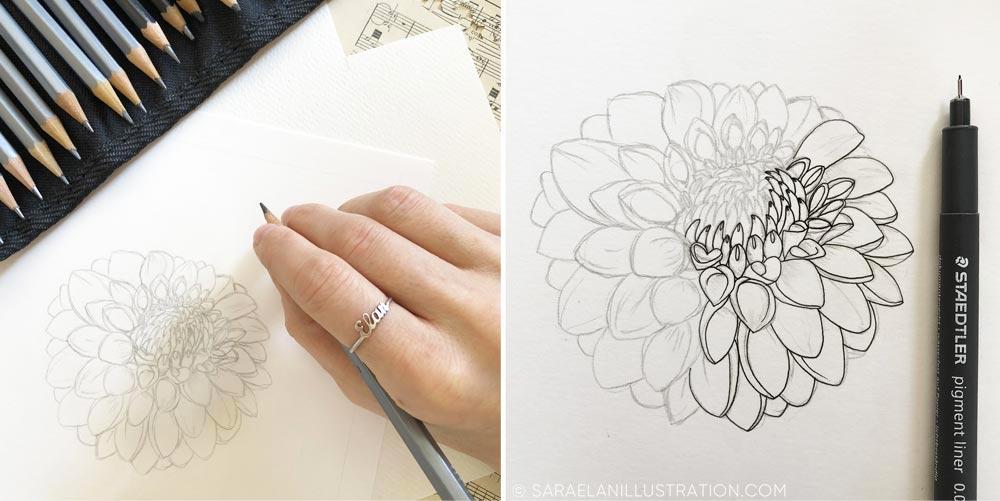 Disegnando un fiore di dalia