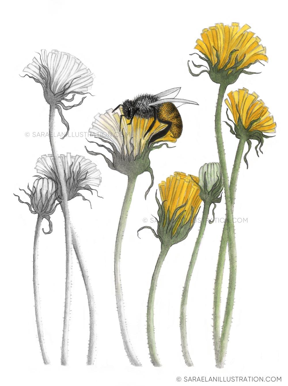 Salviamo le api disegno metafora per la salvaguardia delle api