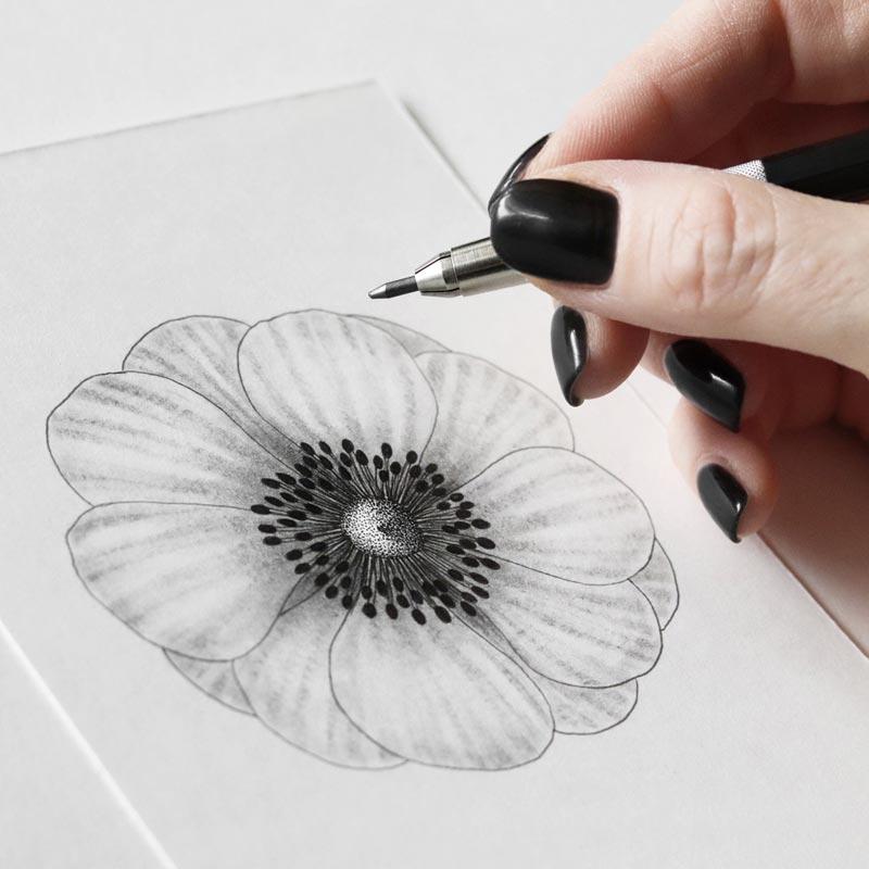 Sara Elan Donati - Saraelan illustration - disegnando un fiore