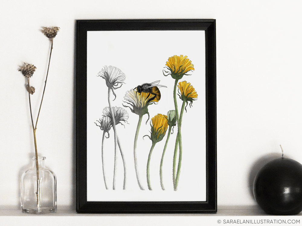 Stampa dedicata alle api