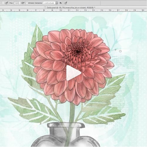 Video colorazione digitale di fiore con Photoshop