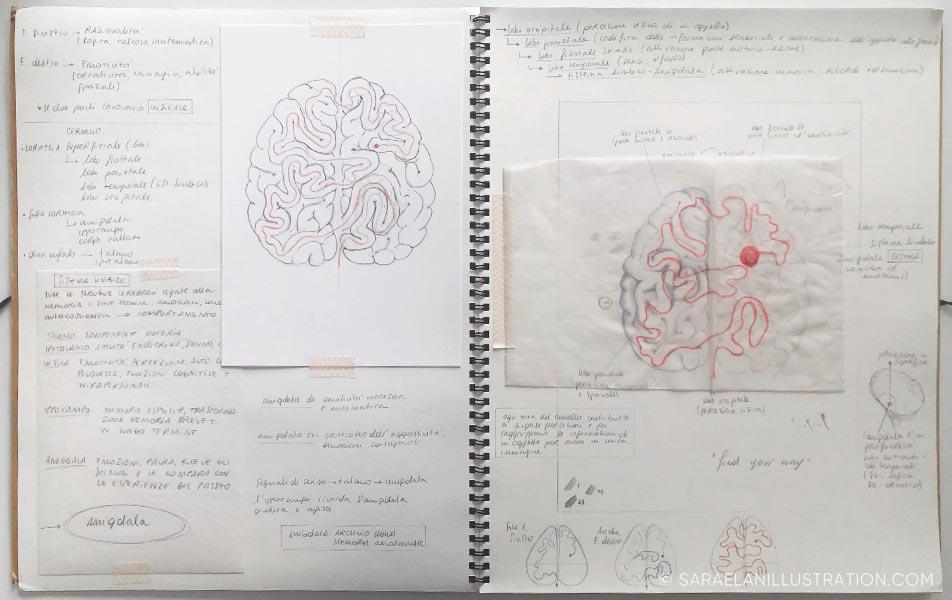 Progetto del labirinto nel cervello