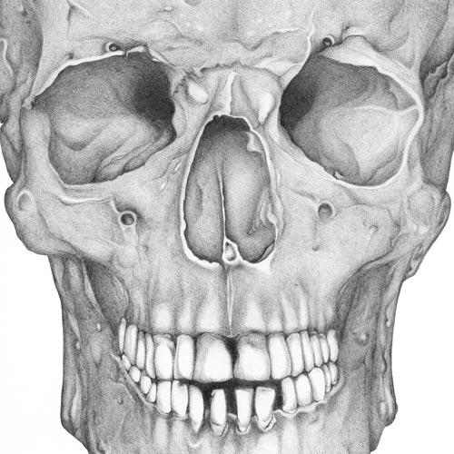 Lezioni di anatomia
