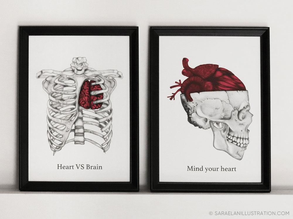 Stampe anatomiche cuore e cervello di Sara Elan Donati
