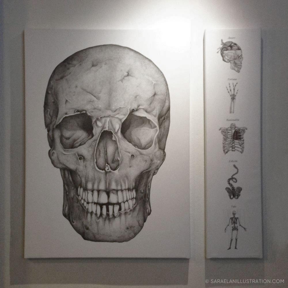 Teschio gigante in mostra al Frida Isola di Milano